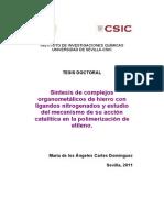 Tesis Doctoral MªÁngeles Cartes