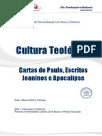 Conteúdo Para Estudar Cartas_de_Paulo (1)