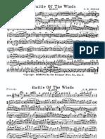 BattleOfTheWinds.pdf