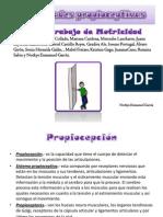 propioceptivo ACTIVIDADES