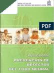 Prevencion Defecto Tubo Neural