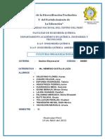 Informe de Cultura Organizacional