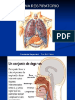 Clases Respiratorio