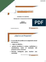 01 Preparacion y Evaluacion de Proyectos Ici