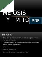 MEIOSIS Y   MITOSIS.pptx