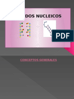 acidosnucleicos-100101153522-phpapp02