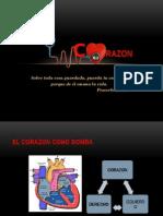 CORAZON(9)