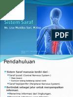 Anatomi Fisiologi sistemsyaraf-