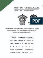 Cisneros-Guerrero. 1986. Adaptación del Nopal como tuna y verdura.pdf