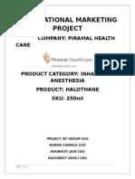 International Marketing Project