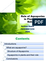 Sulthan Ramiz Role of Aquaporins in Plant Water Balance