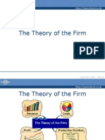 Theory of Firm & Costs