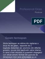 Produse Profesional-Glass