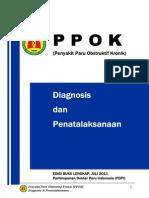 Guideline PPOK Lengkap