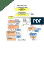 Algoritma Rinosinusitis REVISI 2014