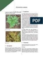 Artemisia annua - Cura cancer.pdf