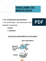 175200_aula 9 Metabolismo de Aminoácidos