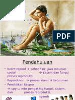Kesehatan Reproduksi Remaja 2