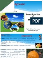 Inv de Merc Ciclo Del Mercado de Productos Agrícolas_URLfeb
