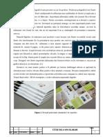 01 Prezentarea Produsului Poligrafic Proiectat