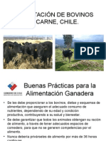 clasealimentacinbovinosenero2010-110630222308-phpapp02