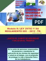 6.- Comites de Seguridad y Salud en El Trabajo