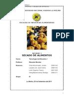 Informe N°3 Secado de alimentos
