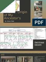 the patel family originskp