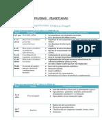 pruebas-piagetianas.pdf