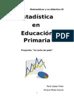 Estadistica en Educacion Primaria
