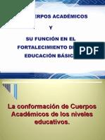 Cuerpos Academicos