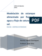 Modelación de estanque con alimentación de sal saturada