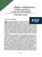Báez-Jorge, Félix. Antropología e Indigenismo en Latinoamérica Señas de Identidad