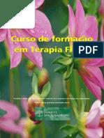 Introdução Florais