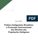 Política indigenista.
