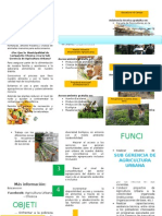 Triptico Agricultura Urbana