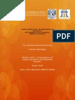 Neri David(9163) Cuadrosinoptico Actividad2 Unidad1