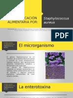 Intoxicación Alimentaria Por Estafilococo Aureus