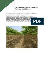 Las Plantaciones de Uva de Mesa