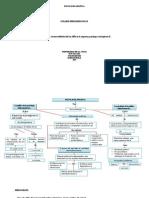Mapa Conceptual- Hacia Una Psicologia Politica