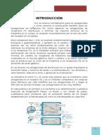 Antihistamínicos h2 (Ranitidina)-Informe 3