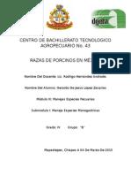 Centro de Bachillerato Tecnologico Agropecuario No