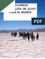 ¿Donde se va el litio de Jujuy?