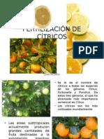 Fertilización de Cítricos