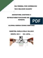 SENTIDO DE LA VISTA.docx