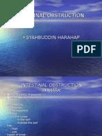 Acute Intestinal Obstruction