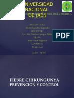 Fiebre Chucungunya 20-10-2014