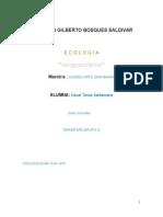 """RECURSOS NATURALES  """"Ecología"""""""
