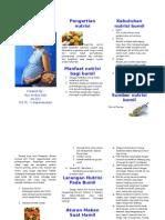 Keb Ntrisi Bumil Leaflet