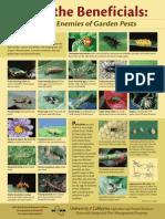 natural-enemies-poster.pdf